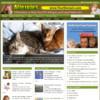 Thumbnail Allergy Website